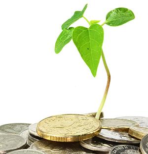 Оплата экологического сбора. Порядок и сроки