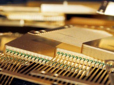 Сколько золота содержится в электронной технике?